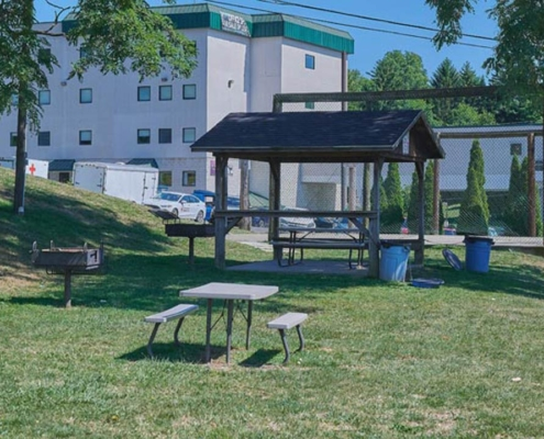 PineView Apartments Outdoor Picnic Detail